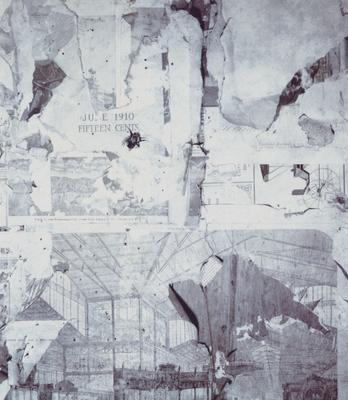 Privy Collage (after Frederick Sommer)