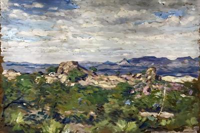 Untitled (Southwest Mountain Panorama)