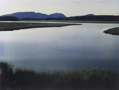 "Tidal Marsh, McKinley, Mount Desert Island, Maine, August 4, 1965 from ""In Wildness"" Portfolio"