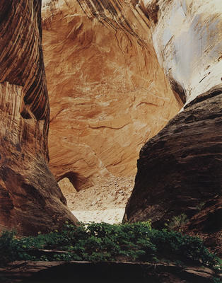 "Amphitheatre, Davis Gulch, Escalante Basin, May 12, 1965 from ""Glen Canyon"" Portfolio"