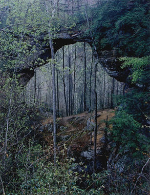 "Gray's Arch, Red River Gorge, Kentucky, 1968 from ""Certain Passages"" Portfolio"