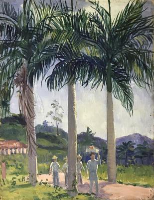 Puerto Rican Palms