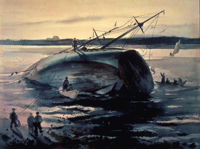 Trawler Aground