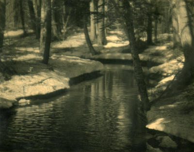 The Rippling Brook