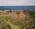Seascape (Cape Ann, Halibut Point)