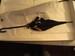 Black Umbrella with Beige Lining